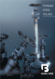 Bonney Forge Gate, Globe & Check Valves